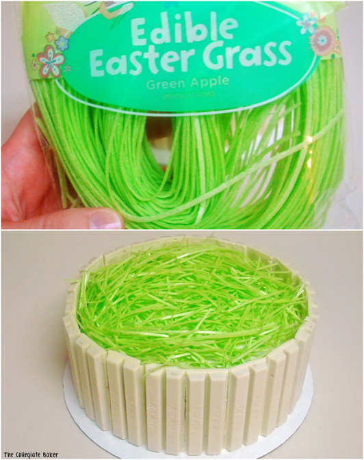 Edible Easter Grass