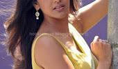 Kajal agarwal sexy back poss hot saree stills