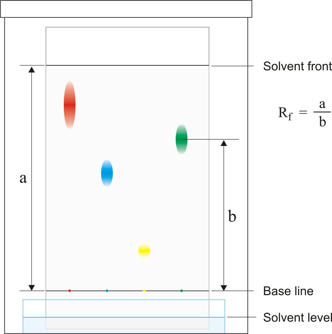 paper chromatography lab essay