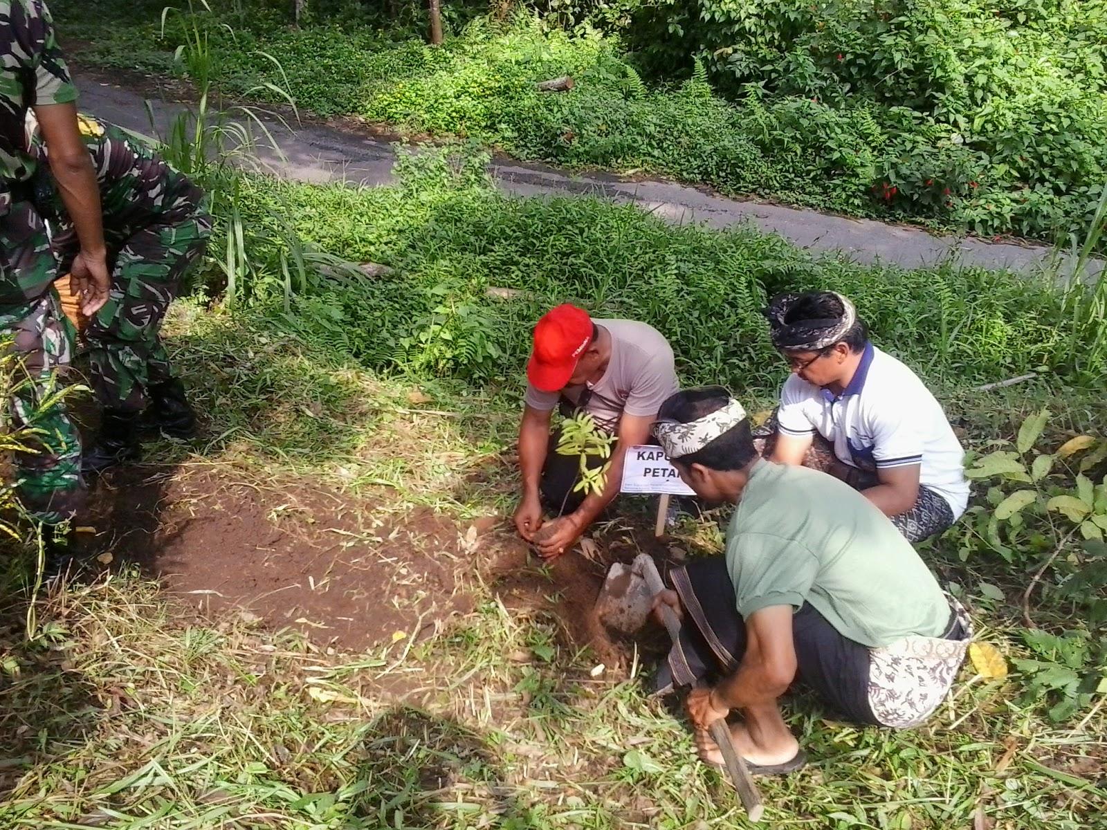 Muspika Kecamatan Petang menanam pohon bersama Karang Taruna Catur Bhuana Desa Pangsan