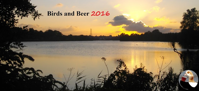 Birds and Beer