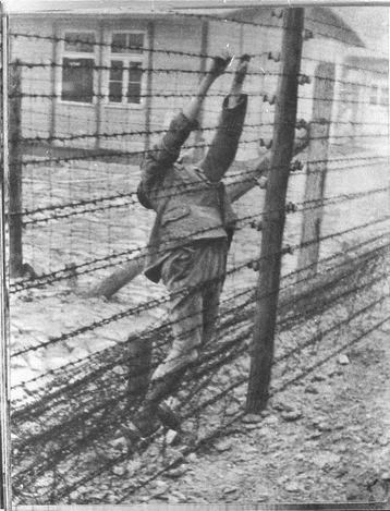 were concentration camps as brutal as The nazi police state was to ensure that everybody did as they  the concentration camps were run by men who could disguise their violent nature simply because they.