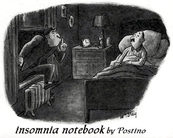 Insomnia Notebook