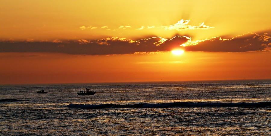 exotic relaxation sunshine coast aussie brothel