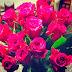 Die Blumen der Liebe