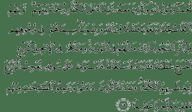 Surat Al-Fath Ayat 29