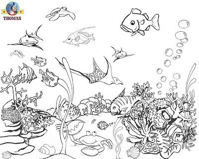 A Special Day On Sodor Aquarium Set
