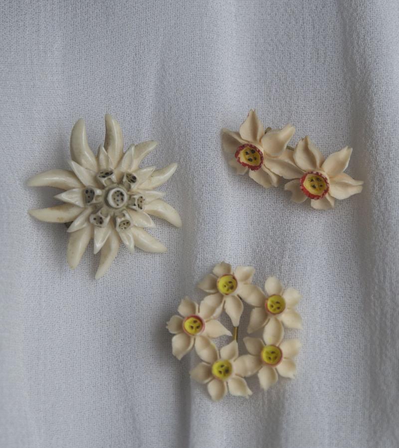 Edelweiss flower clip art