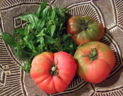 Basket with 3 Heirloom tomatoes and bunch of basil