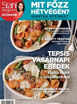 http://www.stahldirekt.hu/hu/konyvespolc/stahl_magazin/stahl_magazin_-_mit_fozz_hetvegen____2014.4._kulonszam