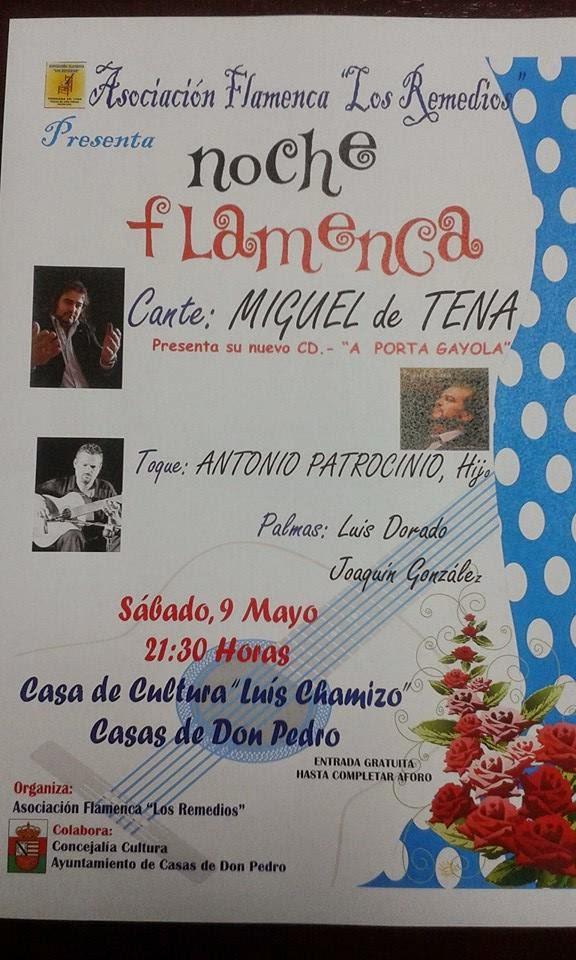 Cultura y folklore espa ol asociaci n flamenca los remedios presenta noche flamenca en casas - Casas de don pedro badajoz ...
