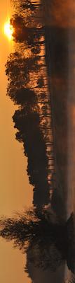 Leganes-amanece-en-el-parque-foto-fco-cecilia Abuelohara