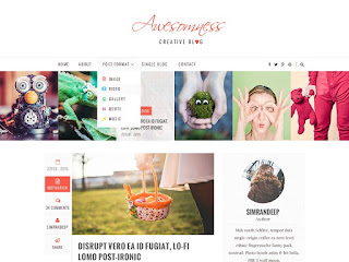 awesomeness-themespie-wordpress-theme