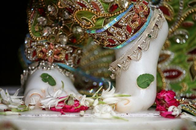 Lotus Feet of Sri Vrindavana Chandra [Sri Krishna]
