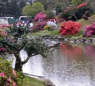 Municipalidad de san isidro prensa el jard n japon s for Jardin japones cursos