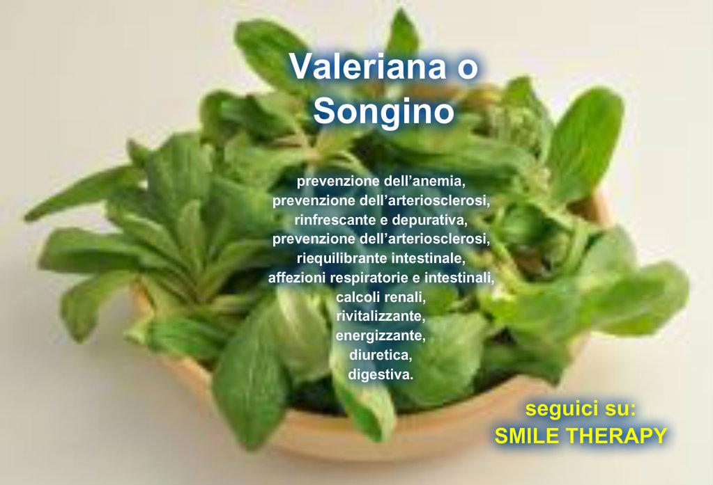 Valeriana una buona insalata di stagione in modo naturale for Songino valeriana