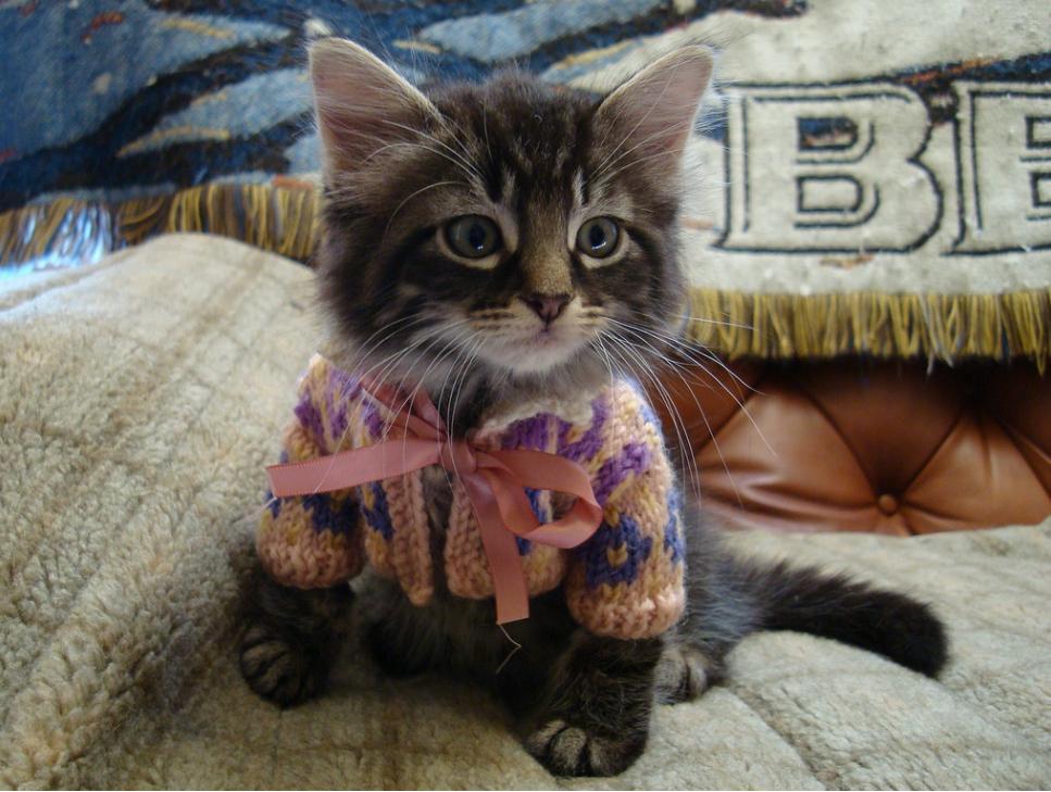 Start A Knitting Group 85
