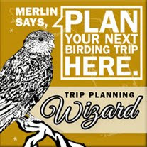 Plan your Birding Trip