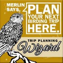Plan your Birding Trip