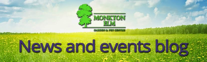 Monkton Elm News, Events and Tips Blog