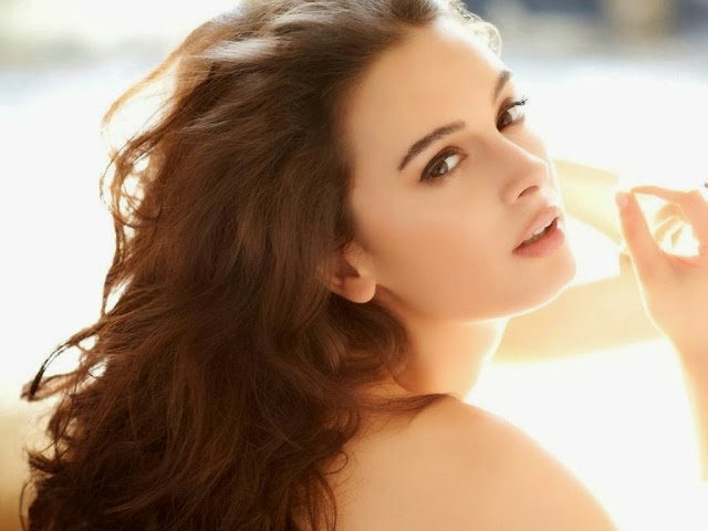 Evelyn+Sharma+Hd+Wallpapers+Free+Download044