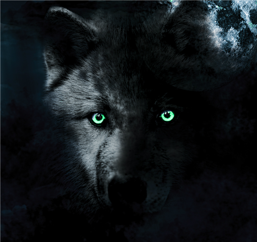 Black wolf with red eyes dream meaning