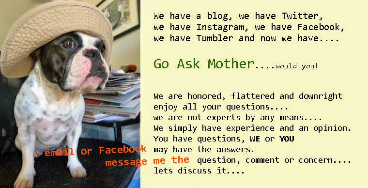 Go Ask Mother....