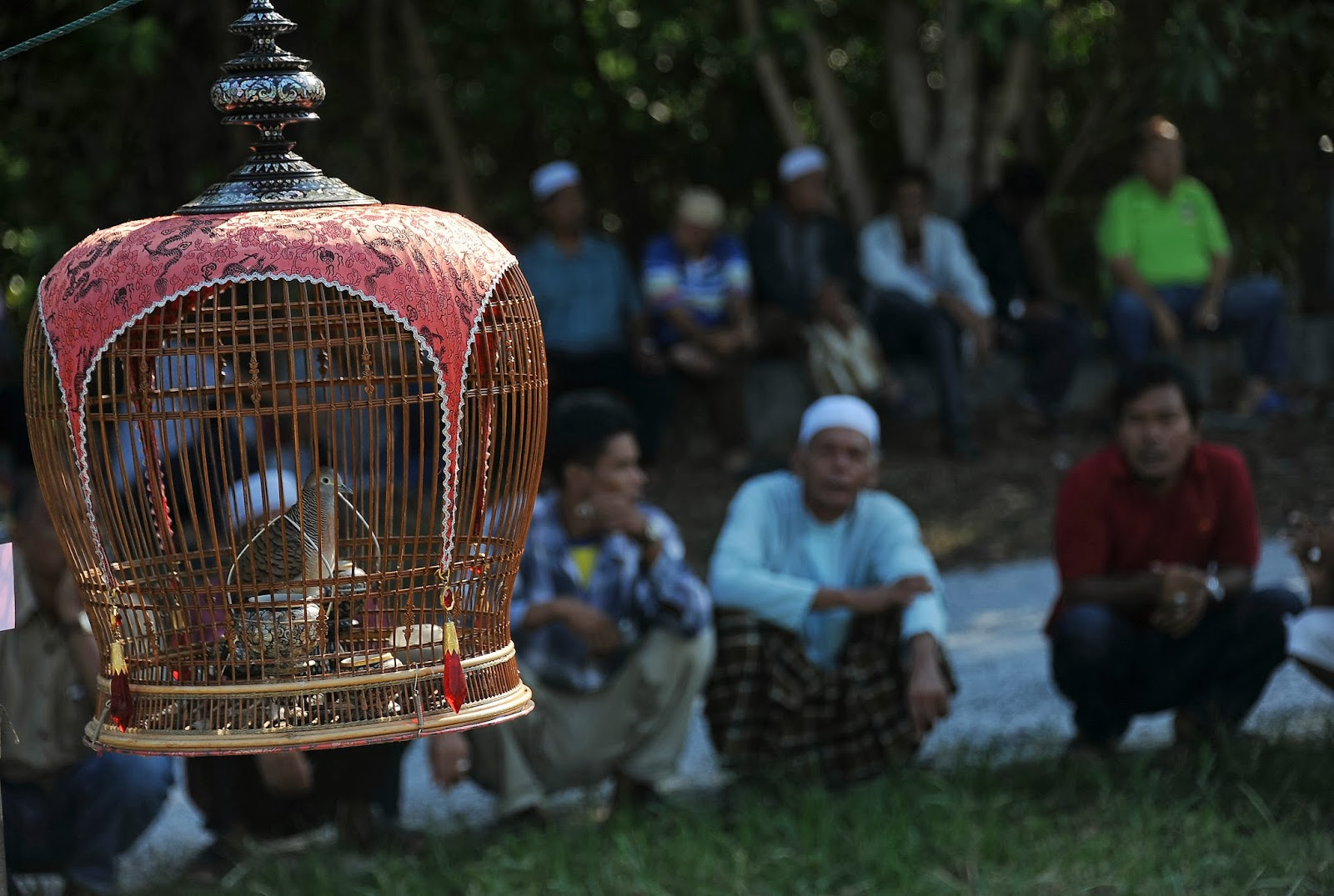 Animal, Bird, Bird-singing Contest, Competition, Contest, Malaysia, News, Offbeat, Participants, Singapore, Thailand,