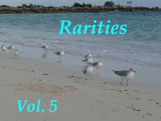 V.A. – Rarities 5