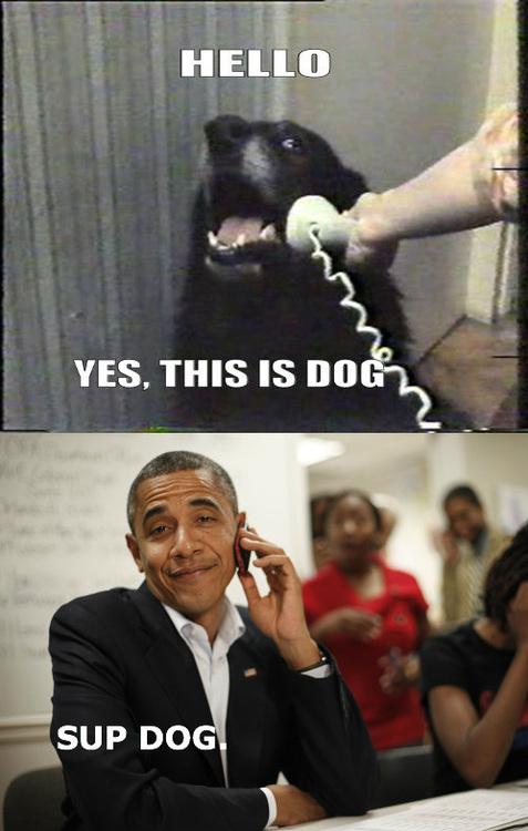 Obama perro