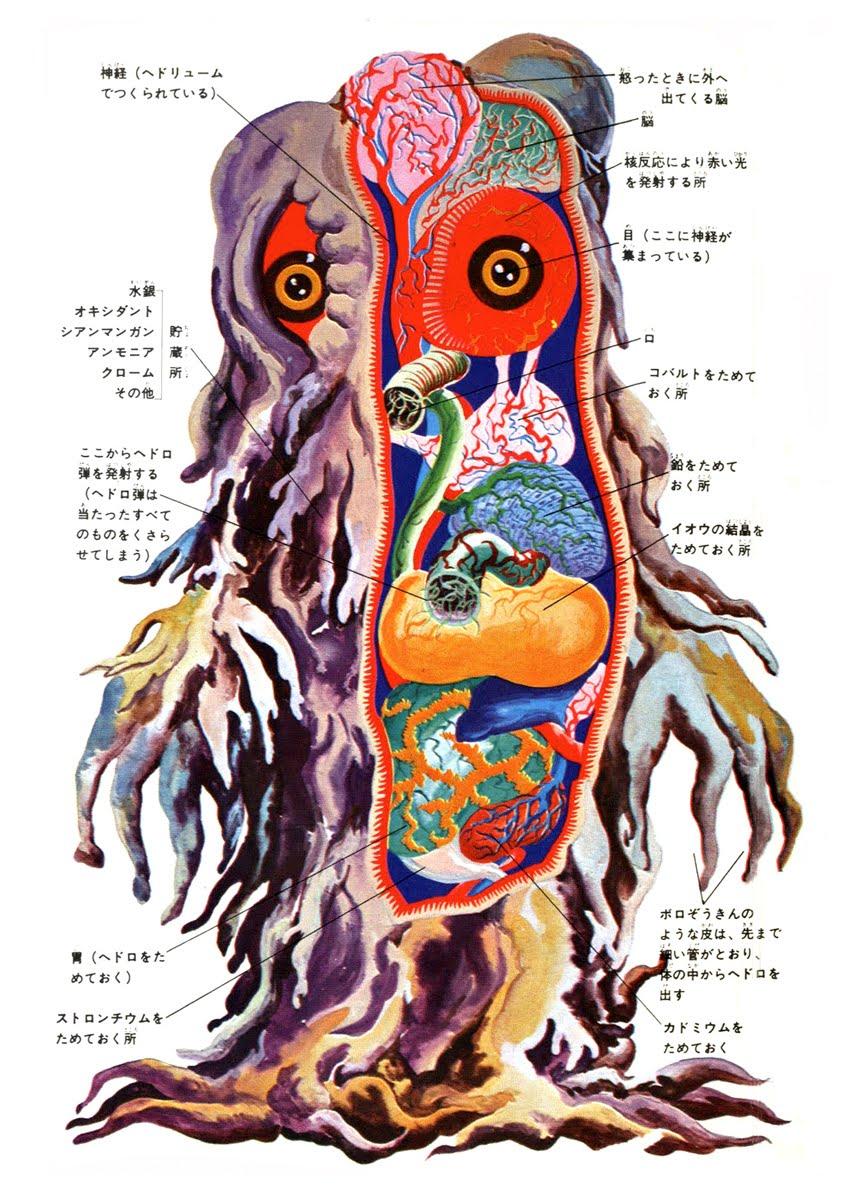 Derekmonster More Kaiju Anatomy