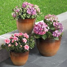 ... Flower Pots In The Two Tone Colors Of Browns Can Be Enjoyed For Just  $14.49 For The Set! Normally Costing $59.99 Now On Sale At A Huge Savings  Of 75% ...