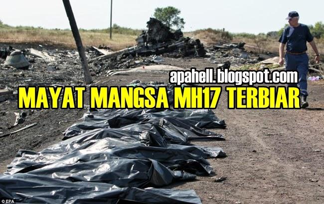 MH17 : Mayat Mangsa Dibiarkan Tanpa Tujuan (14 Gambar)