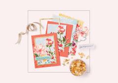 January - June Mini Catalogue