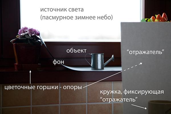 Как сделать в домашних условиях белый фон