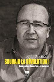 كتاب فتحي بن سلامة عن ثورة تونس