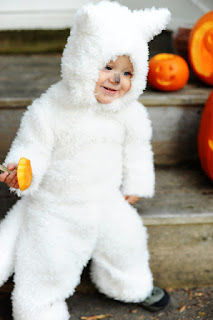 wolfpup childs costume