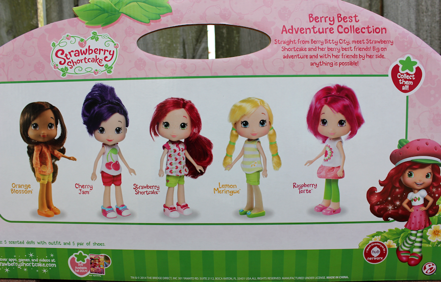 DollyPanic More on the new Strawberry Shortcake dolls