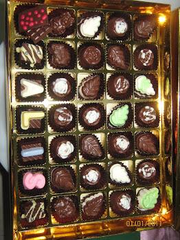 coklat pelbagai jenis