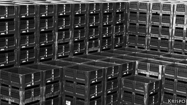 cajas de pescado apiladas