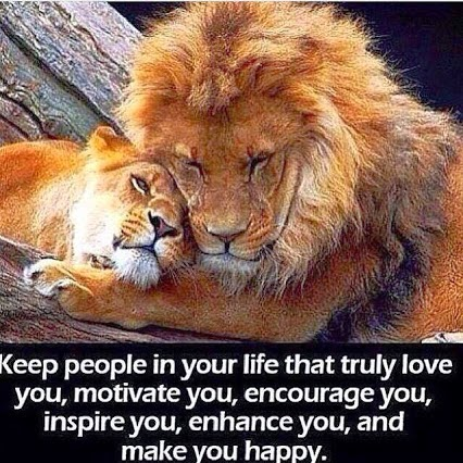 """Keep people in your life that truly love you, motivate you, encourage you, inspire you, enhance you, and make you happy."" Picture of a lion and lioness snuggling"