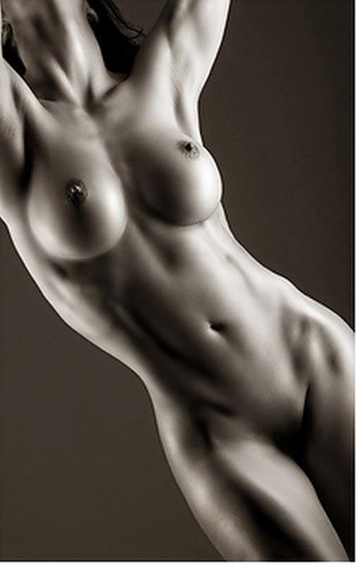 imagenes-artisticas+figura-torso-mujer