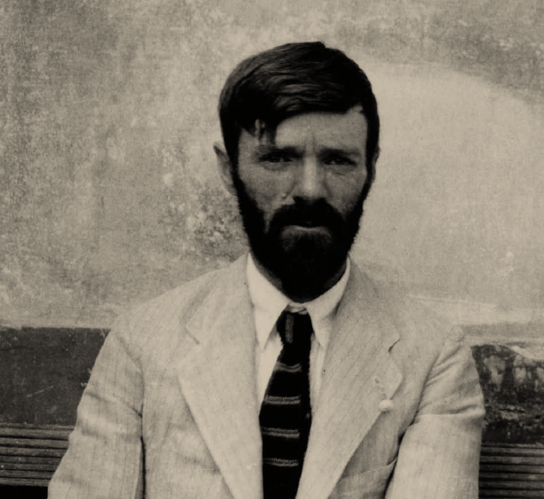 essays about d.h.lawrence Modern heroism essays on d h lawrence, william empson, & j r r tolkien item preview remove-circle share or embed this item  internet archive books.