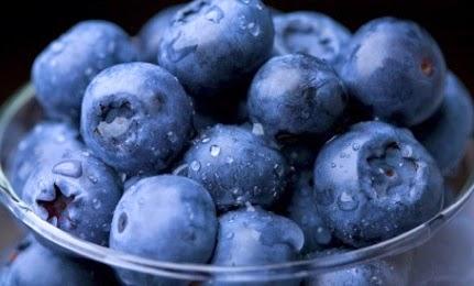 Asal Usul Mula Blueberry