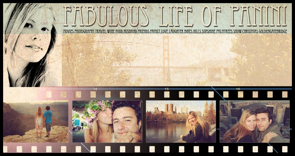 Fabulous life of Panini