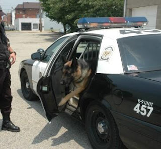 how to train my german shepherd like a police dog