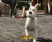 #10 Adventures of Tintin Wallpaper