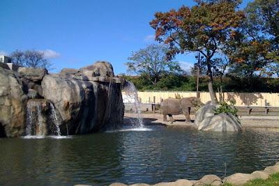 Roger Williams Zoo