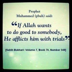 Prophet Muhammad (pbuh) said: