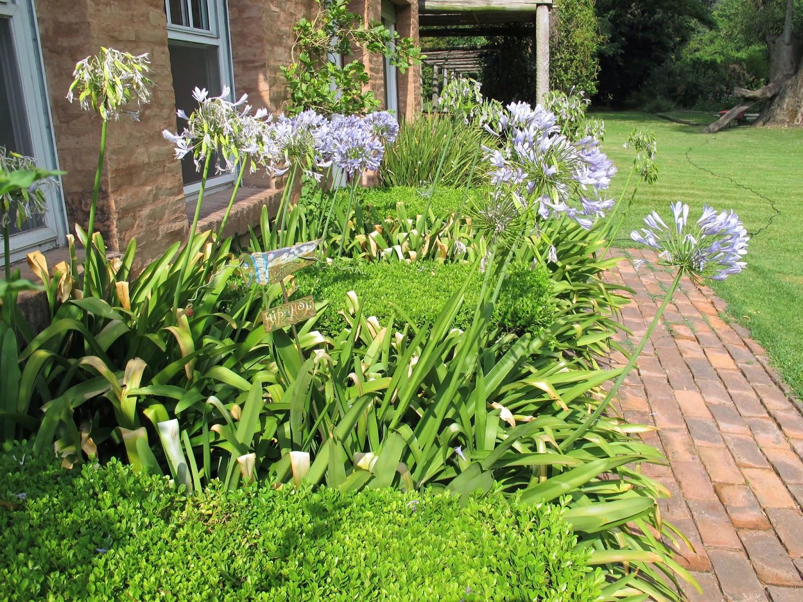 En el jardin calor de nuevo en buenos aires for Canteros de jardin